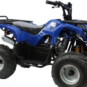 110cc & 125cc Petrol Quads