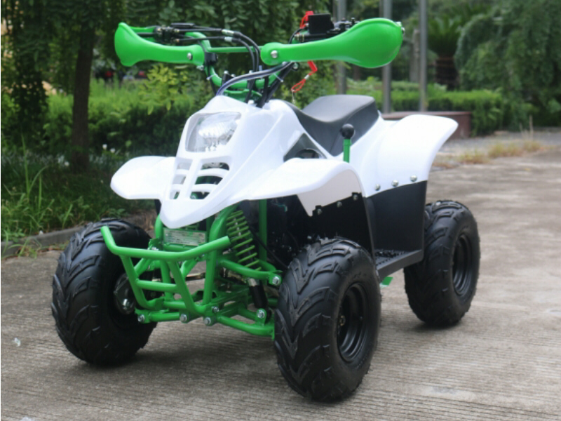 110cc Thunder Cat Quad Bike 4 Stroke with Electric Start and Reverse Gear