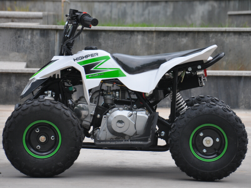 Mini 110cc Quad Bike Thunderstarter 4 Stroke with Electric Start and Reverse Gear